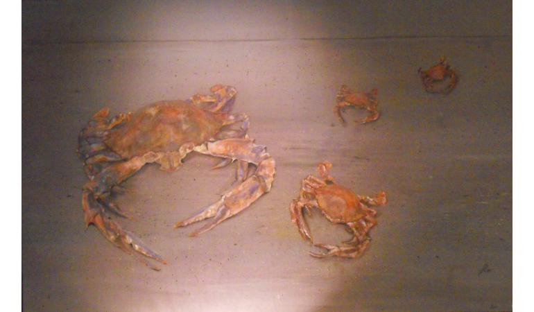 Les crabes de Kribi